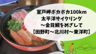 室戸岬ポカポカ100km太平洋サイクリング〜金目鯛をめざして【田野町〜北川村〜東洋町】