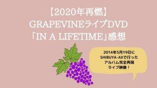 【2020年ストリーミングde再燃】GRAPEVINEライブDVD「IN A LIFETIME」感想