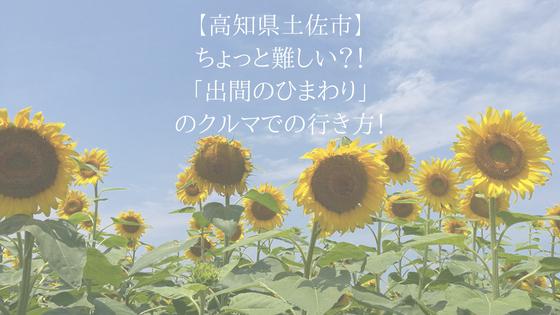 【高知県土佐市】ちょっと難しい?!「出間のひまわり」のクルマでの行き方!