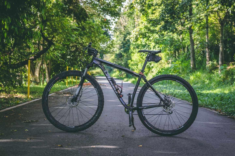 グリーンシーズンのサイクリングは最高です